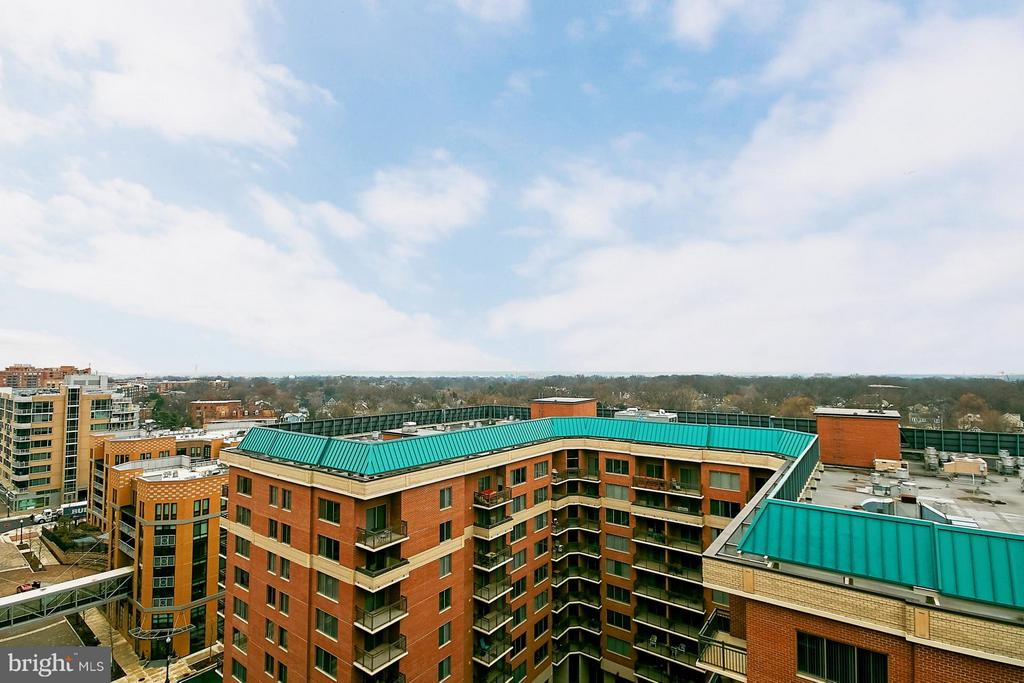 View - 901 MONROE ST N #1310, ARLINGTON