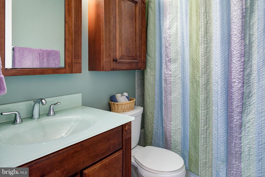 Updated Baths - 5527 CEDAR BREAK DR, CENTREVILLE