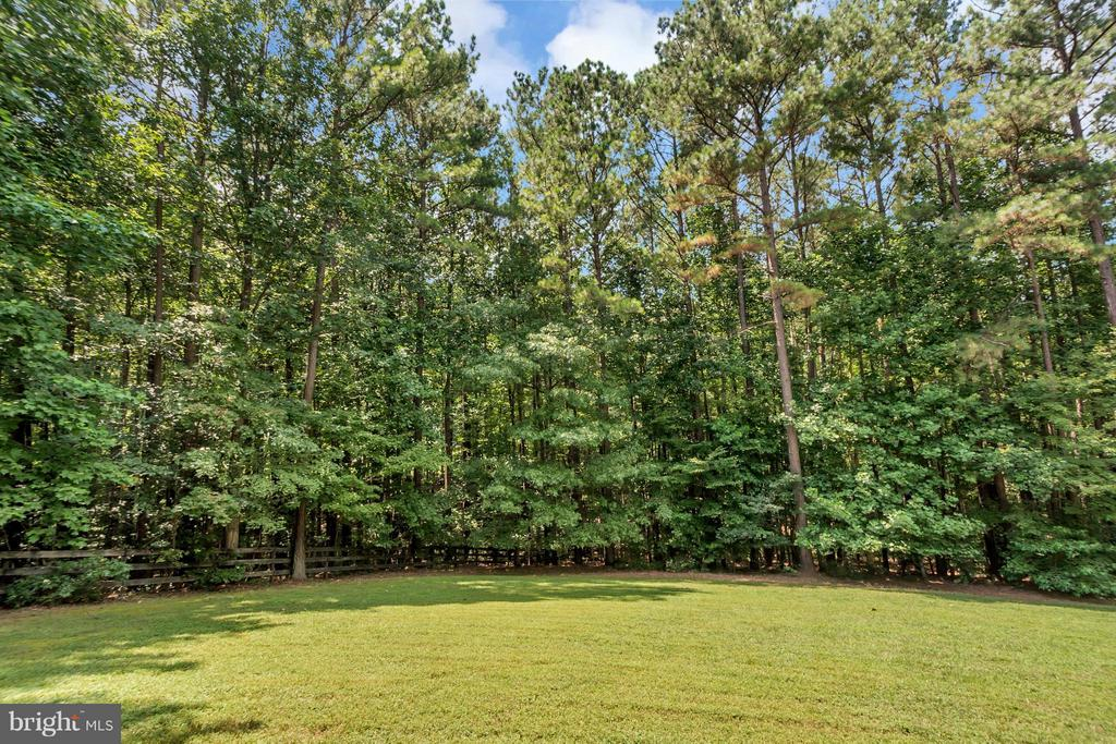 large backyard surrounded with trees - 12640 ISLE OF PINES BLVD, FREDERICKSBURG