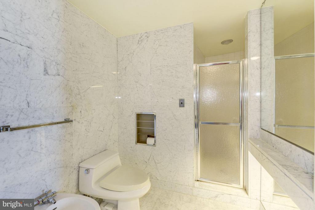 The owner's 5 piece bath includes a bidet. - 1300 CRYSTAL DR #1610S, ARLINGTON