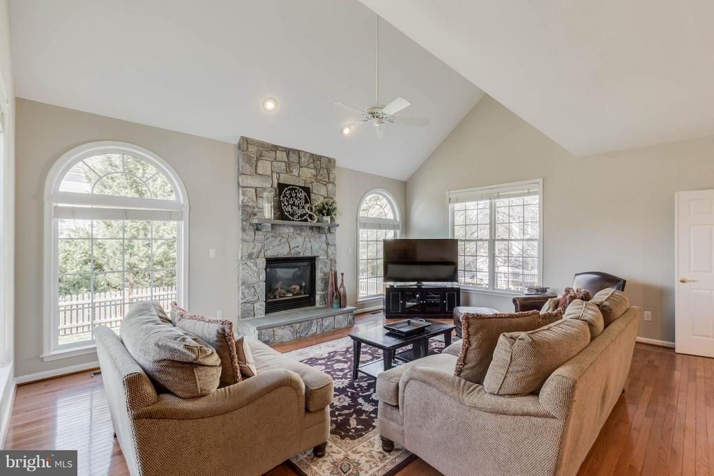 Family Room with vaulted ceiling and stone hearth - 43008 BATTERY POINT PL, LEESBURG