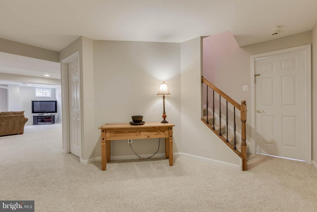 Lower Level Landing Area to Rec Room - 43008 BATTERY POINT PL, LEESBURG