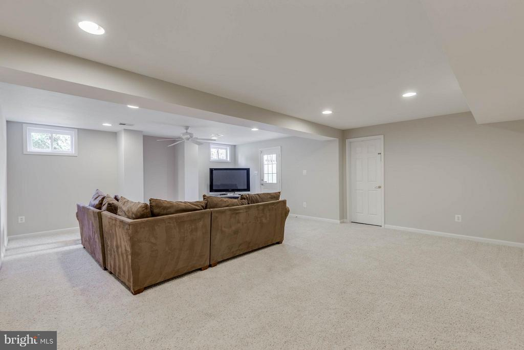 Rec Room with windows and walk up exit to yard - 43008 BATTERY POINT PL, LEESBURG