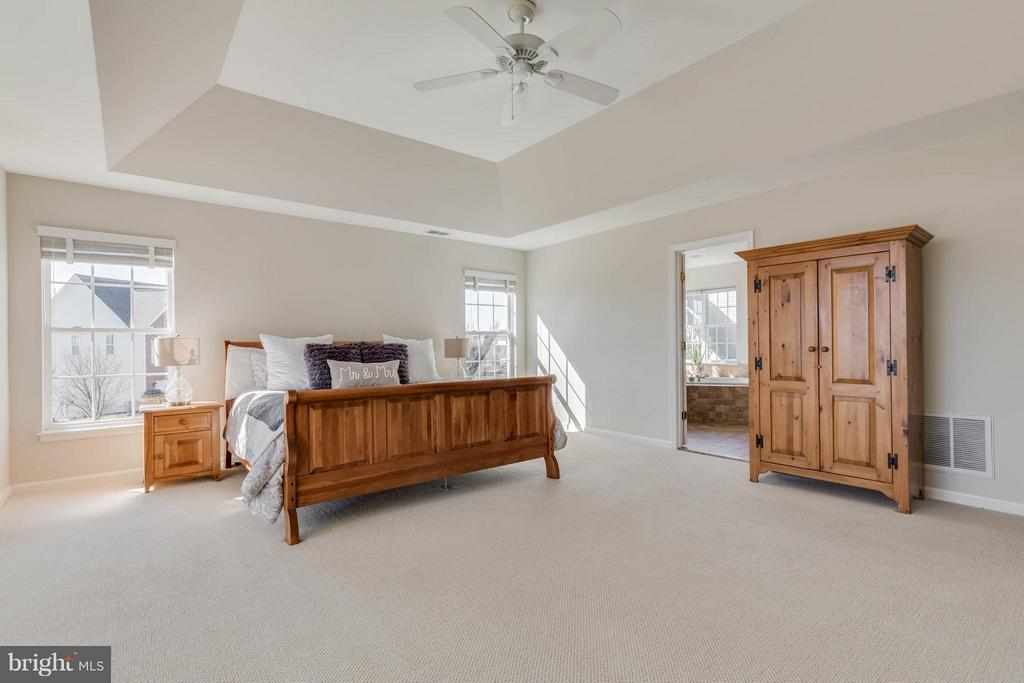 Master Bedroom with tray ceiling - 43008 BATTERY POINT PL, LEESBURG