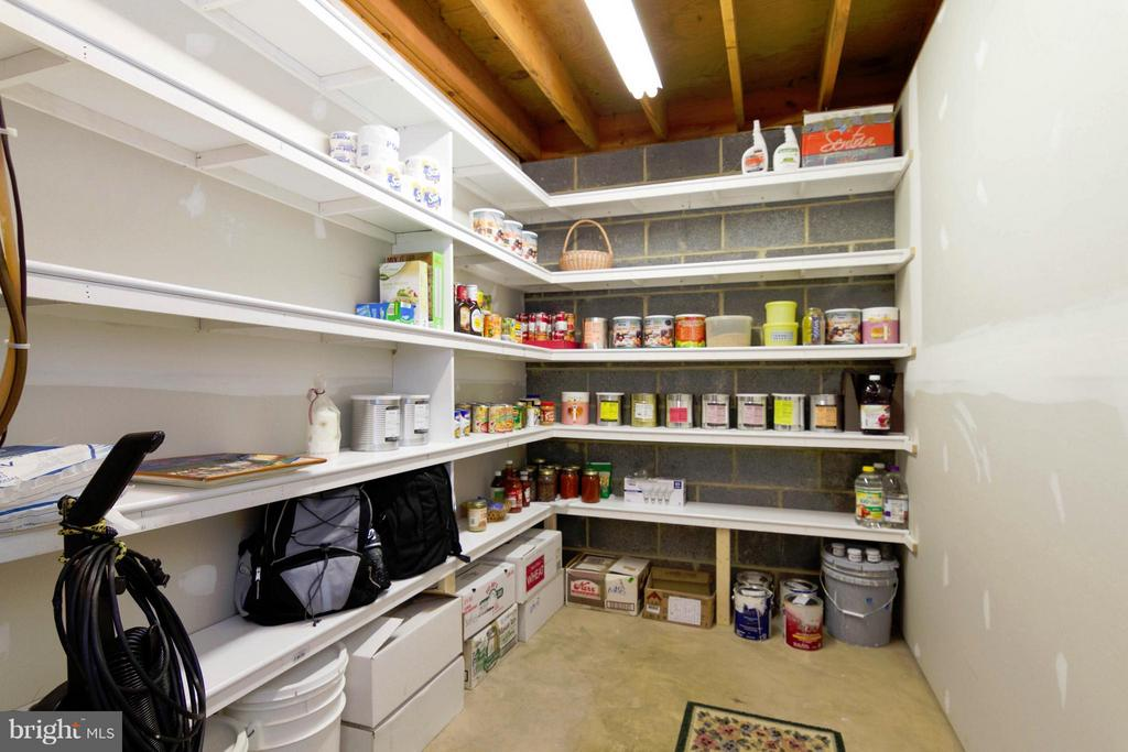 Basement Storage - 13408 CARRAGEEN DR, MANASSAS