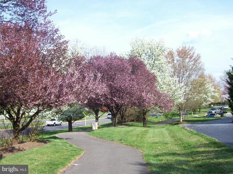 Exeter is beautiful in the spring - 545 RICHMOND SQ NE, LEESBURG