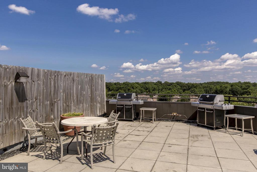 BBQ GRILLS - PERFECT FOR ENTERTAINING! - 1001 VERMONT ST N #508, ARLINGTON