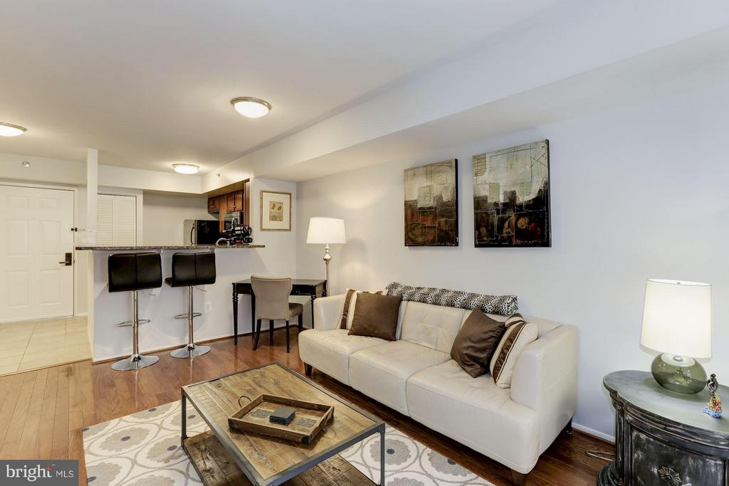 LIVING ROOM - OVERHEAD LIGHTING! - 1001 VERMONT ST N #508, ARLINGTON
