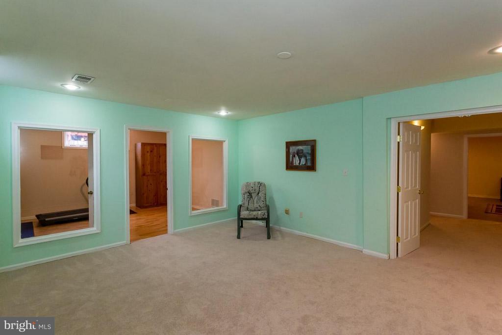 Lower Level Family Room - 2527 HEATHCLIFF LN, RESTON