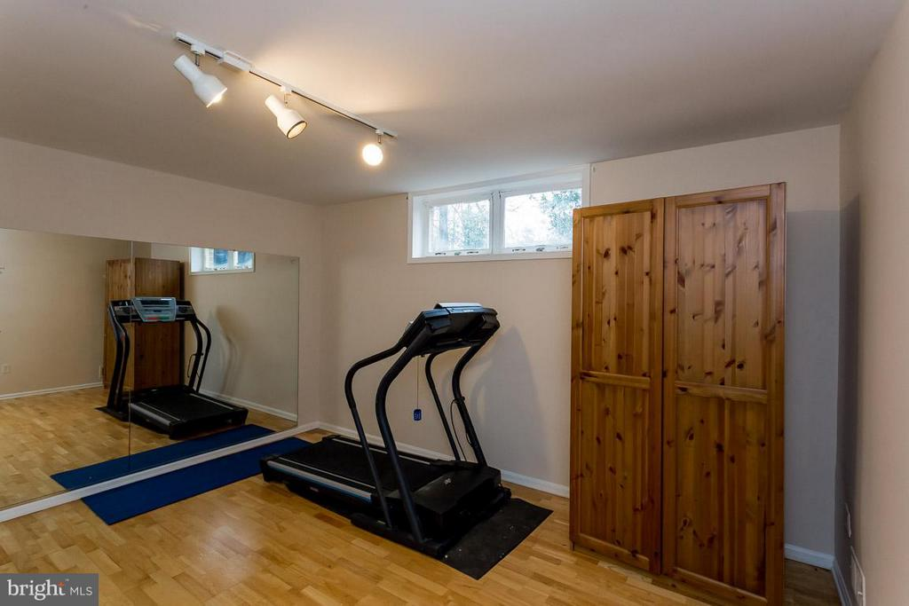 Lower Level Work Out Room - 2527 HEATHCLIFF LN, RESTON