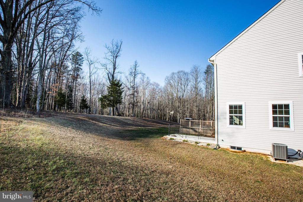 Surrounded by conservation area, these views stay! - 51 JANNEY LN, FREDERICKSBURG