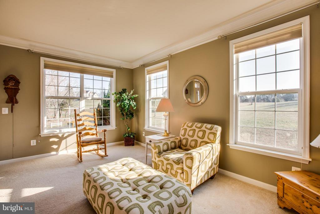 Room for engaging conversation and pastoral views - 51 JANNEY LN, FREDERICKSBURG