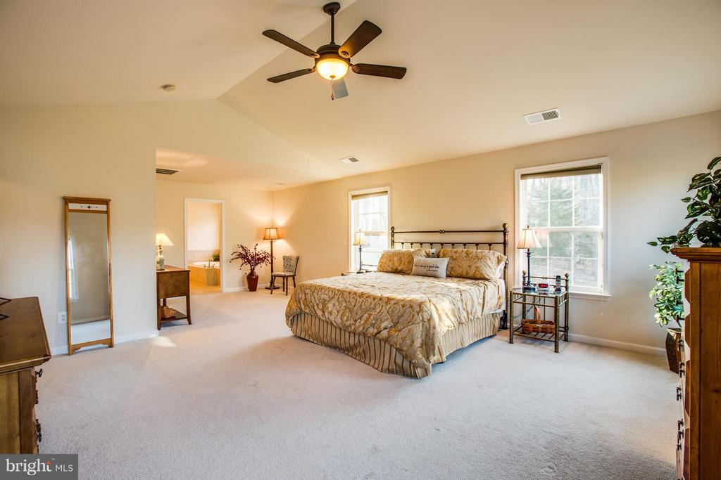 Large master with vaulted ceiling and sitting area - 51 JANNEY LN, FREDERICKSBURG