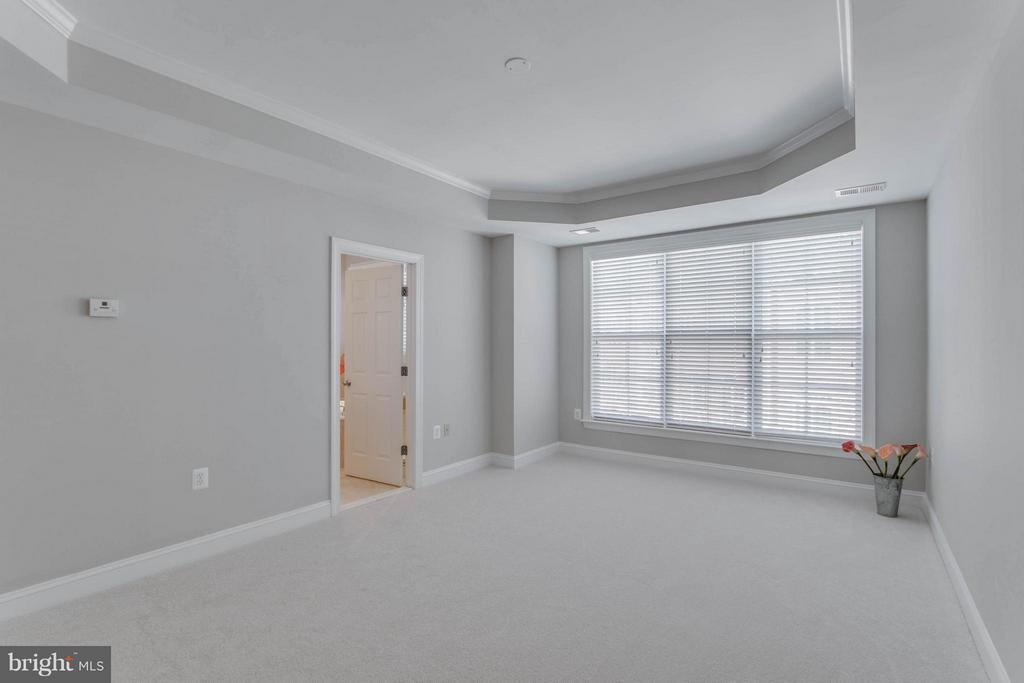 Light and airy master bedroom - 800 BRANCH DR, HERNDON