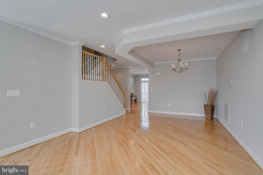 Notice the tray ceiling - 800 BRANCH DR, HERNDON