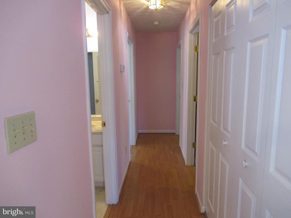 Hallway - 185 DOGWOOD DR, LOUISA