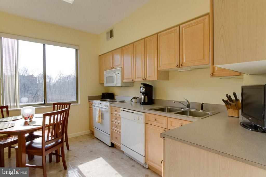 Kitchen - 2900 LEISURE WORLD BLVD #402, SILVER SPRING