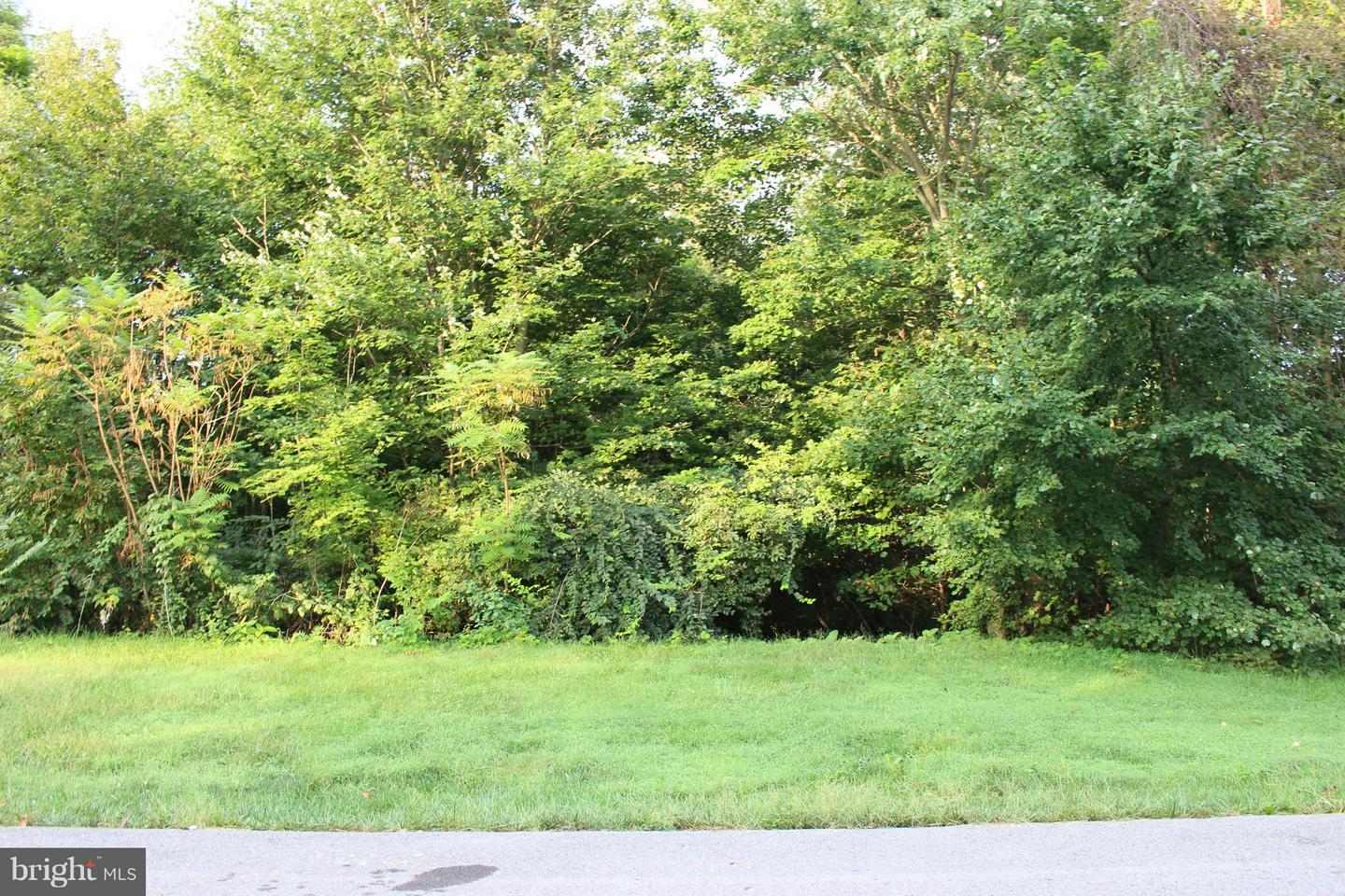 Land for Sale at 6575 Pullhook Ln Fayetteville, Pennsylvania 17222 United States