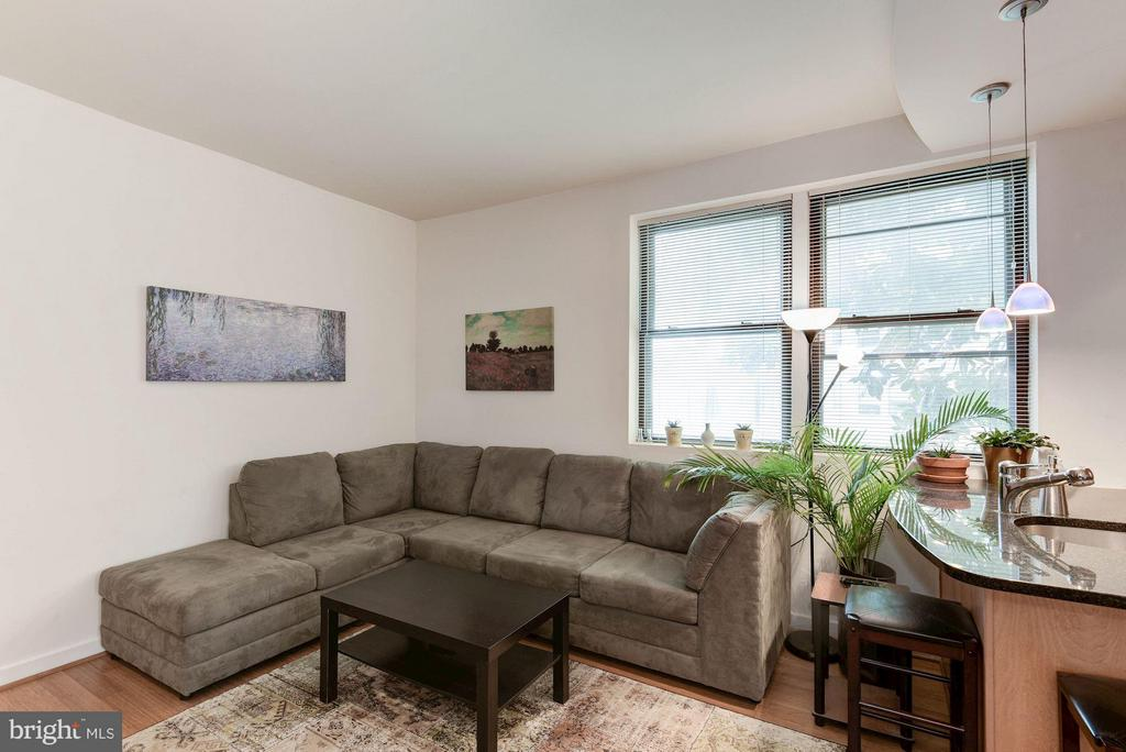 Great Natural Light - 116 NORTH CAROLINA AVE SE #204, WASHINGTON