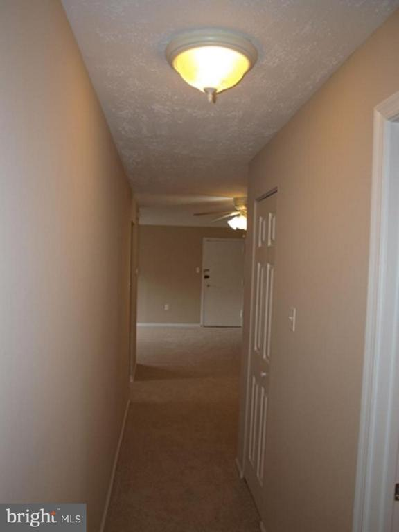Interior (General) - 442 ARMISTEAD ST #204, ALEXANDRIA