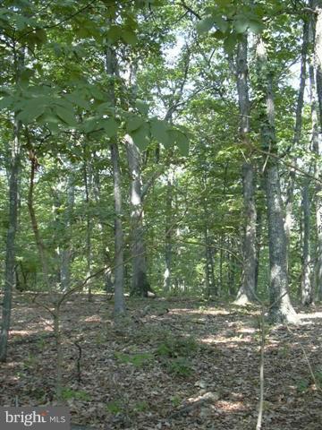 Land for Sale at 24 Sleepy Knolls Shanks, West Virginia 26761 United States