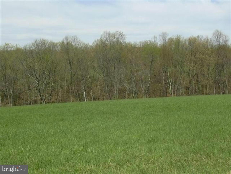 Land for Sale at 55 Sleepy Knolls Shanks, West Virginia 26761 United States