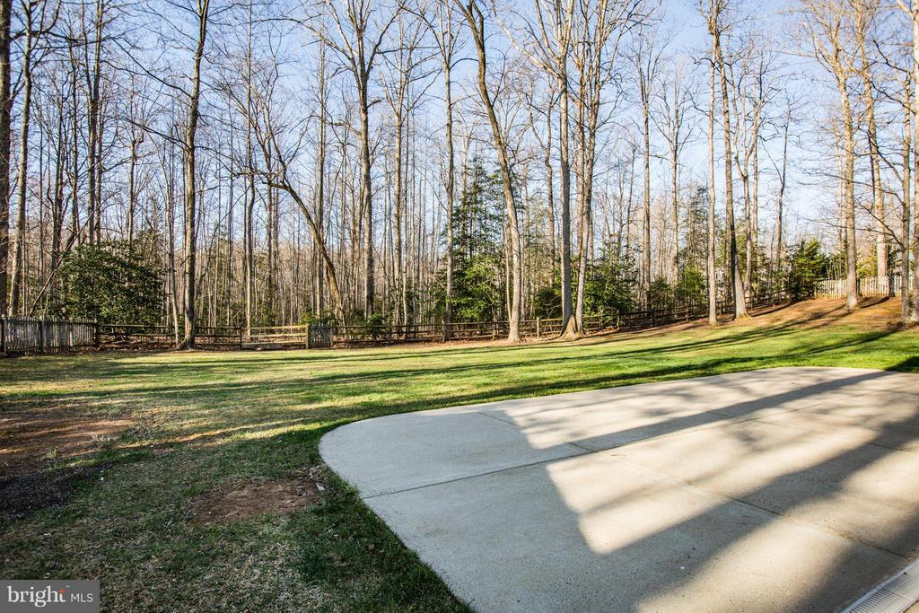 Lots of extra outdoor usable space 42x28 patio - 229 SAINT MARYS LN, STAFFORD