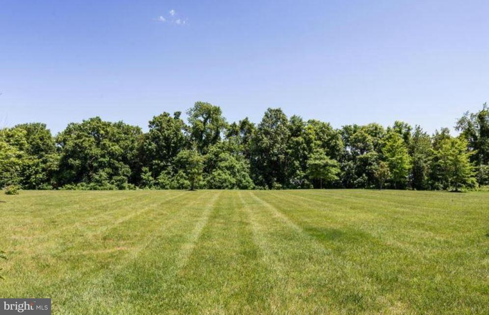 Amazing .57 Acre Lot Backing To Trees and Pond - 43812 CHURCHILL GLEN DR, CHANTILLY
