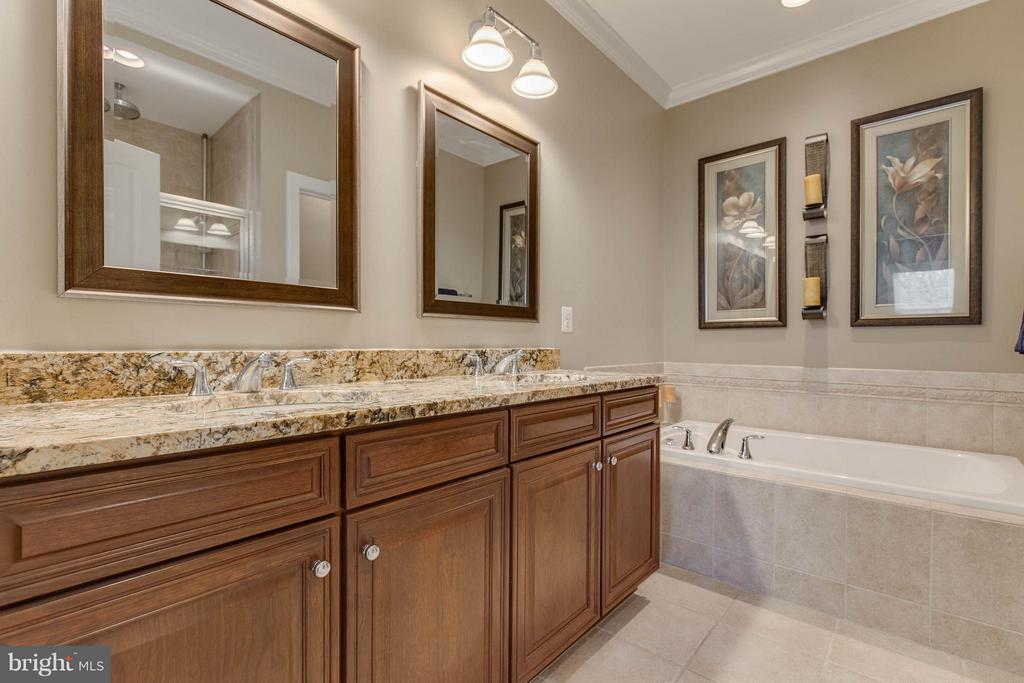 Luxury Master Bathroom - 22344 HARRIER LN, LEESBURG