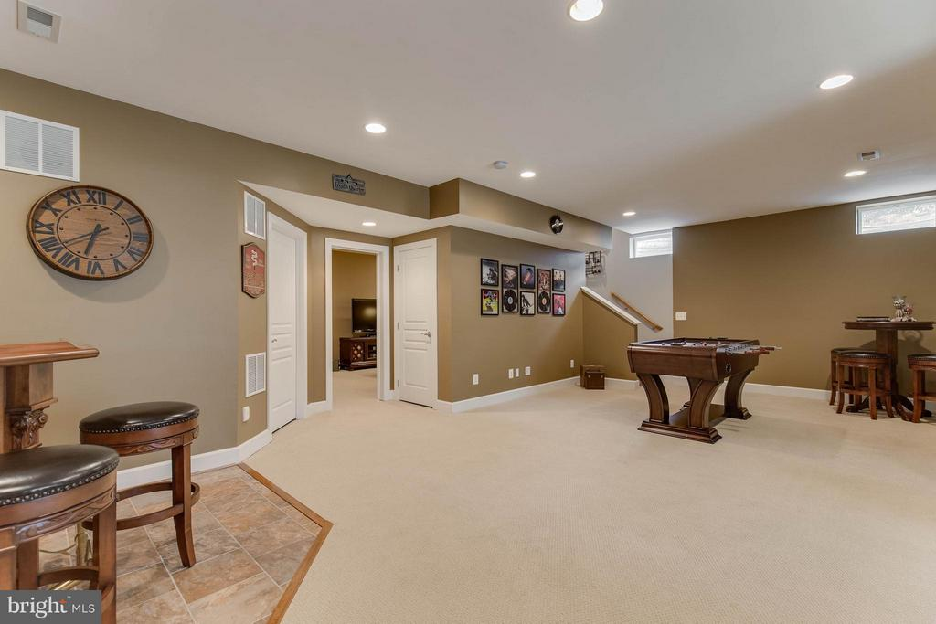Basement - 22344 HARRIER LN, LEESBURG