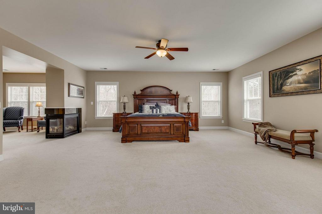 Spacious Master Bedroom - 22344 HARRIER LN, LEESBURG