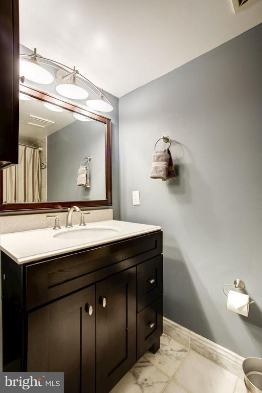MASTER BATHROOM - UPGRADED BEAUTIFULLY! - 1808 OLD MEADOW RD #1403, MCLEAN
