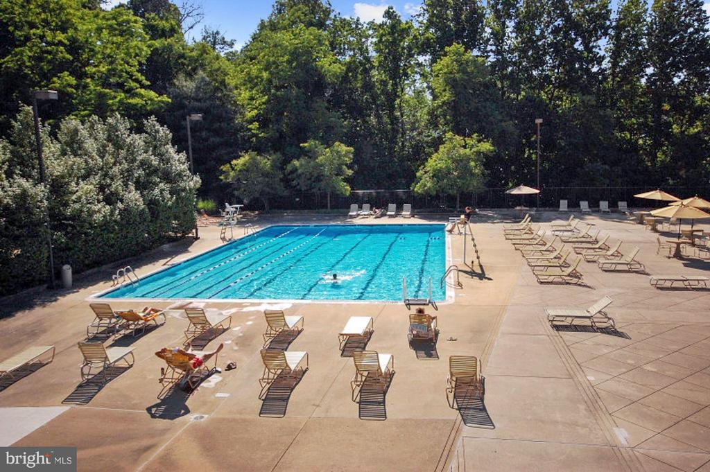 COMMUNITY POOL - 1 OF 3 POOLS TOTAL! - 1808 OLD MEADOW RD #1403, MCLEAN