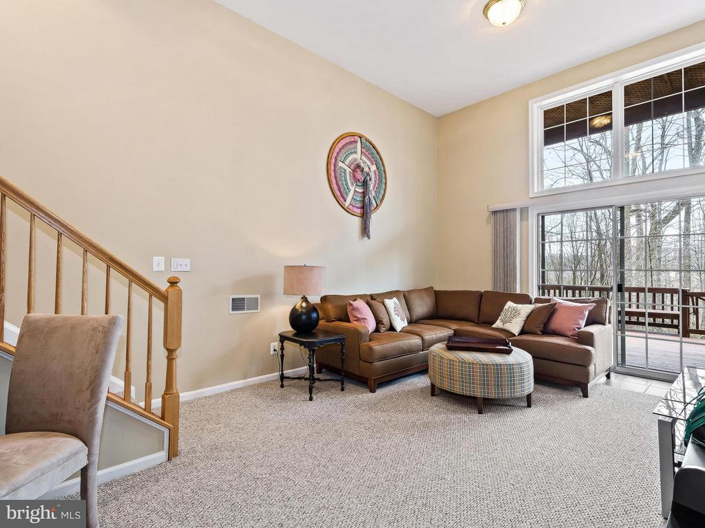 14' ceilings and walk out to deck - 5637 GOVERNORS POND CIR, ALEXANDRIA