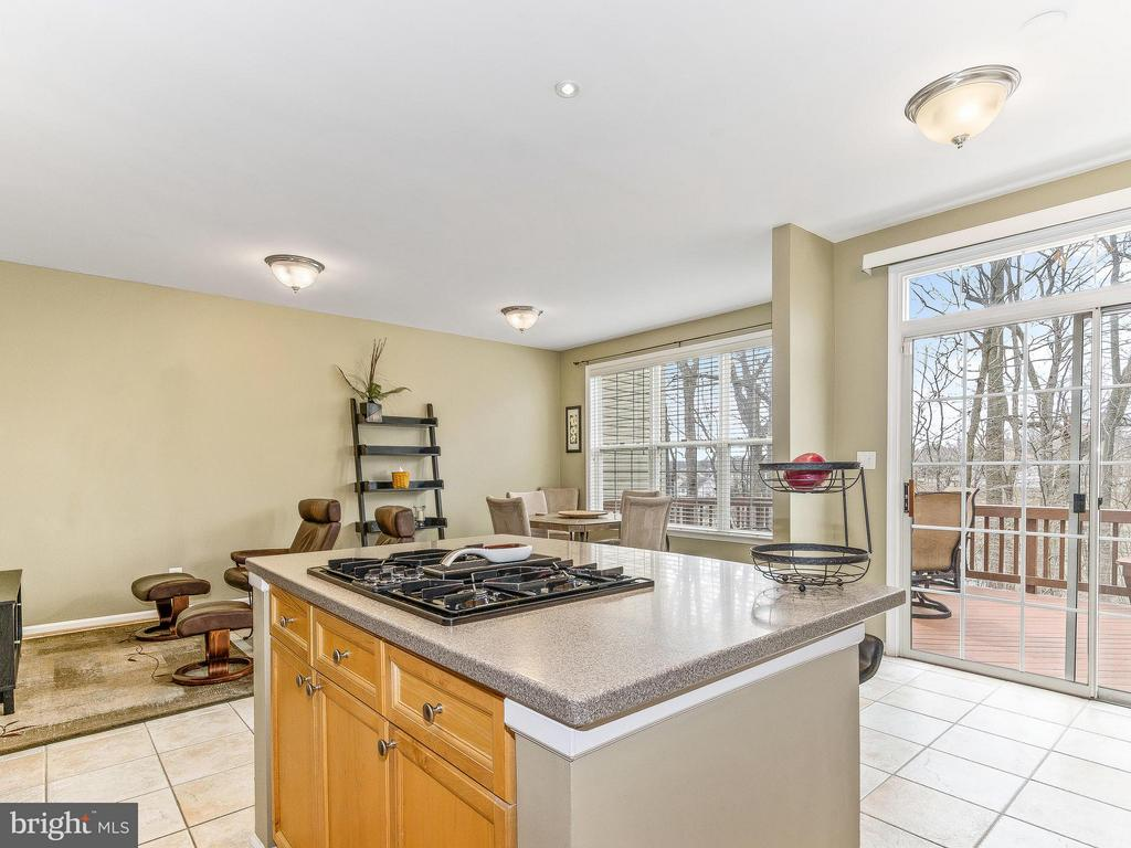 Cooking with a view - 5637 GOVERNORS POND CIR, ALEXANDRIA