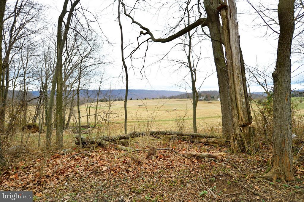 Pasture and Mountain Views - 450 DEER MOUNTAIN DR, HARPERS FERRY