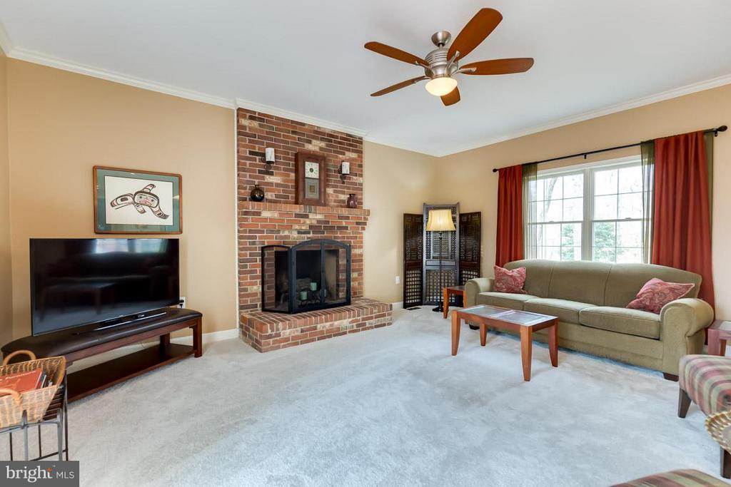 Cozy up to the wood burning fire - 11079 OVERRUN DR, MANASSAS