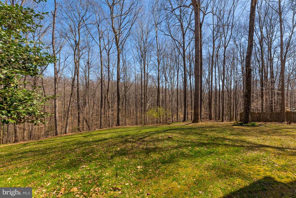 Incredible privacy with cleared views to nature. - 11079 OVERRUN DR, MANASSAS