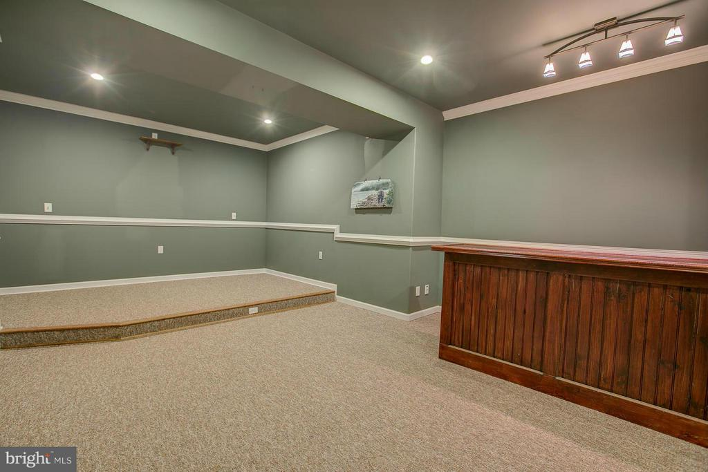 Movie Theater Room with Wet Bar - 23 CARDINAL DR, FREDERICKSBURG