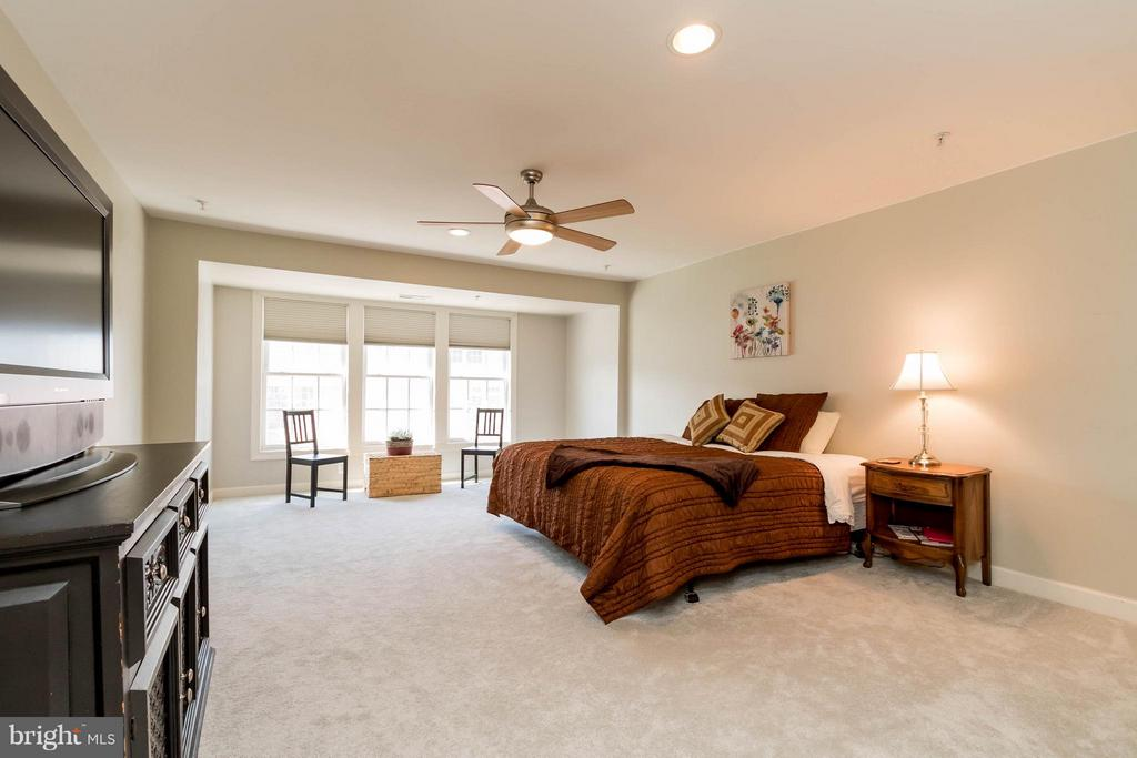 Spacious Master Bedroom - 9638 PARSON MASSEY PL, LORTON