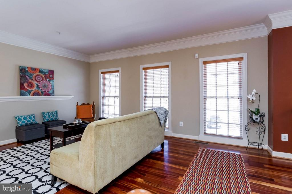 Great Natural Light! - 9638 PARSON MASSEY PL, LORTON