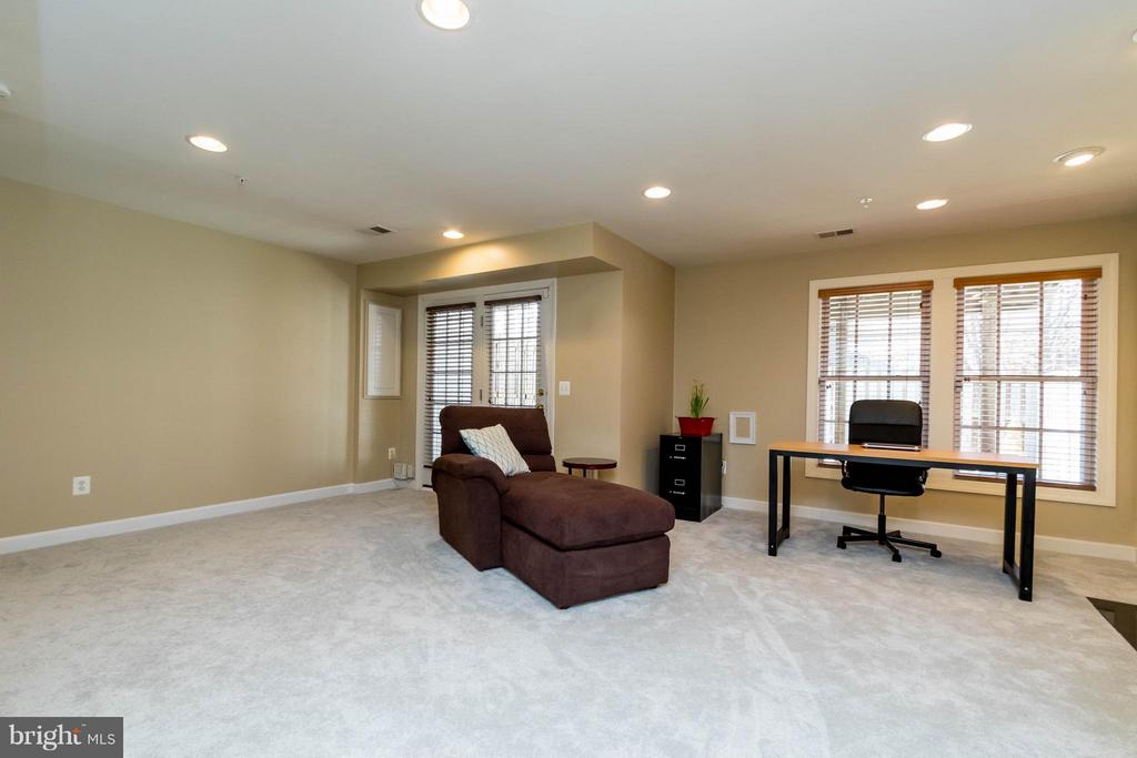 Spacious Basement with Walk-Out to Yard or Garage - 9638 PARSON MASSEY PL, LORTON