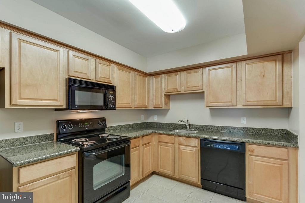 Cabinets galore!  Fantastic! - 3179 SUMMIT SQUARE DR #2-D6, OAKTON