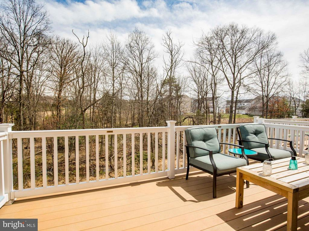 Overlooking Common Area and Mature Trees - 22856 YELLOW OAK TER, STERLING
