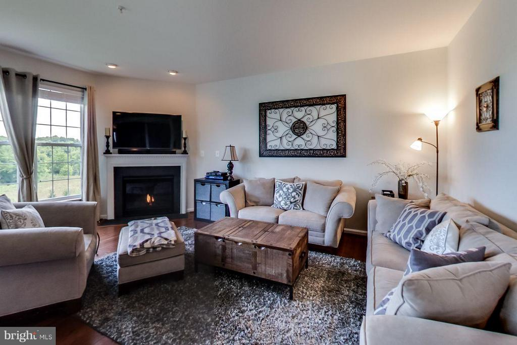 Family Room - 719 SEWELL DR, NEW MARKET