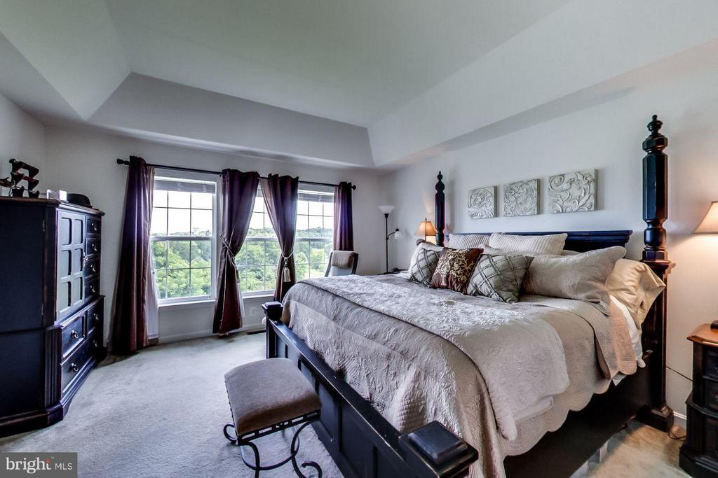 Bedroom (Master) - 719 SEWELL DR, NEW MARKET