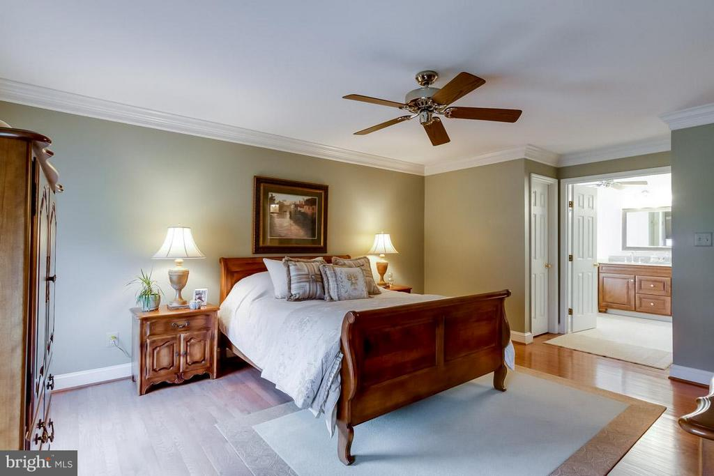 Bedroom (Master) - 12704 THUNDER CHASE DR, RESTON