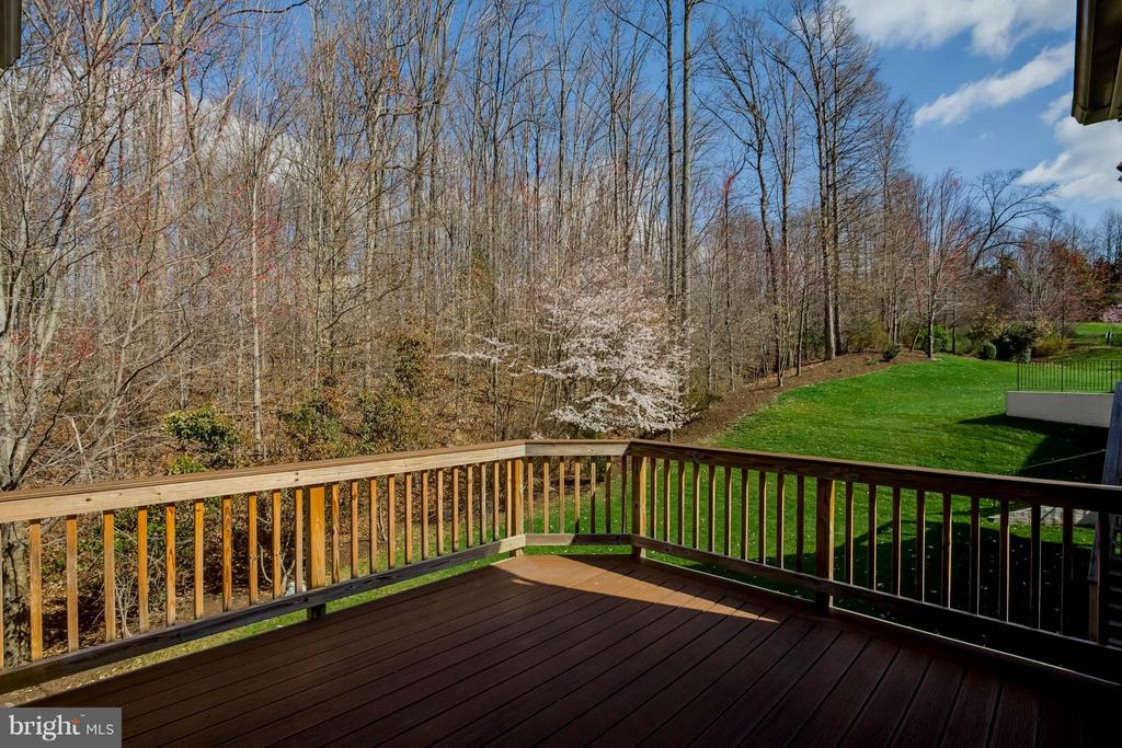 View from the open deck area - ready for grilling - 8 DAYTON CIR, FREDERICKSBURG