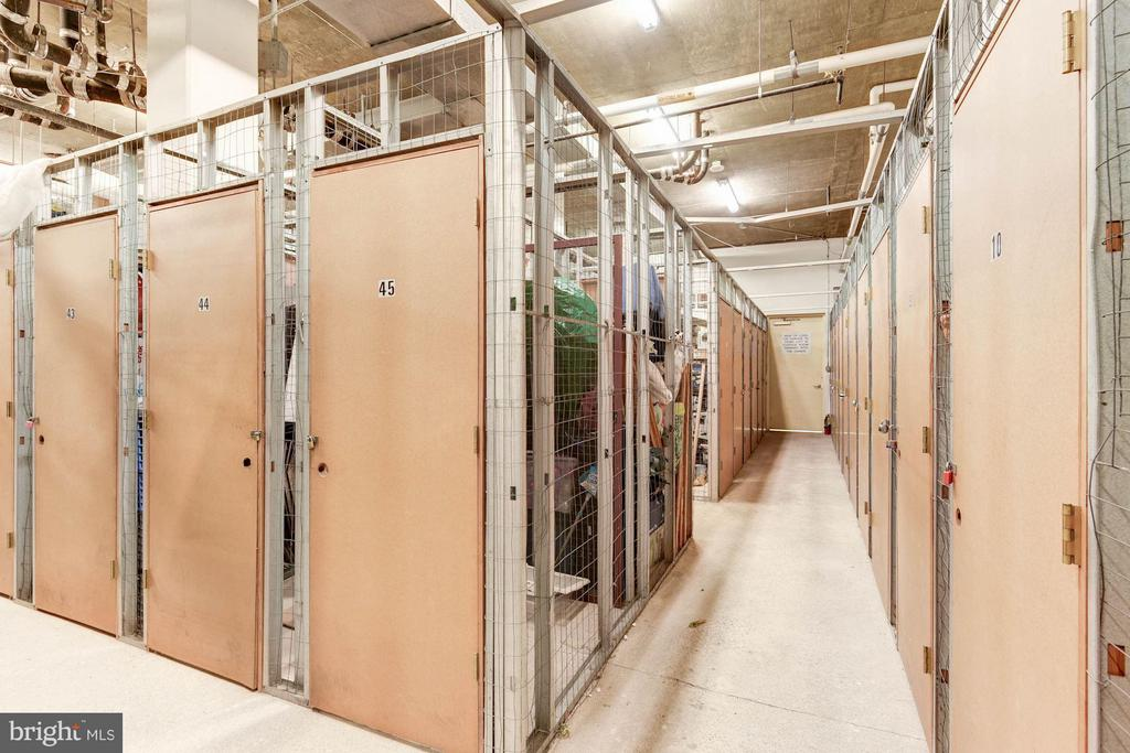 Extra storage conveys - 2400 CLARENDON BLVD #310, ARLINGTON
