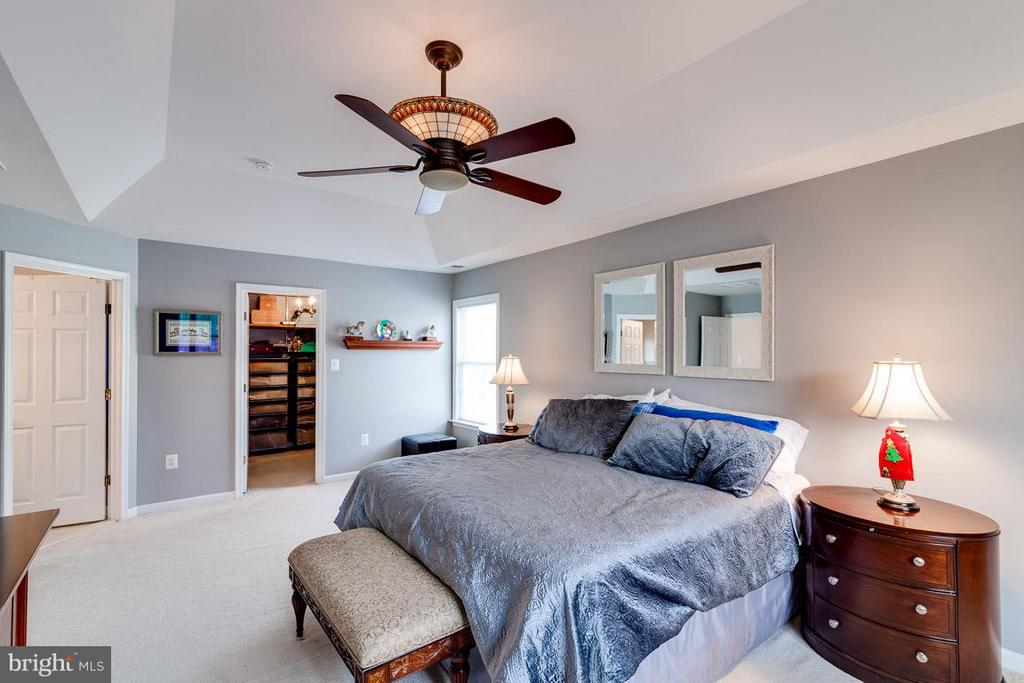 Bedroom (Master) with CF, large WIC - 5386 ABERNATHY CT, FAIRFAX